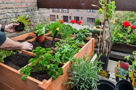 Comment aménager un jardin sur son balcon ?